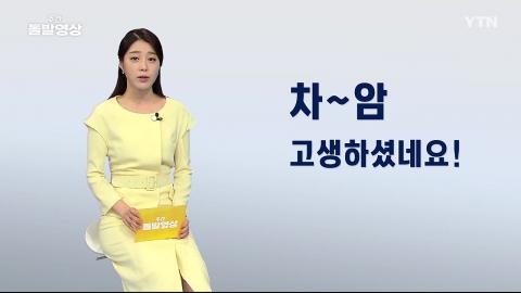 [주간 돌발영상] 8월 둘째 주