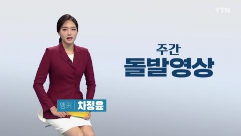 [주간 돌발영상] 10월 첫째 주