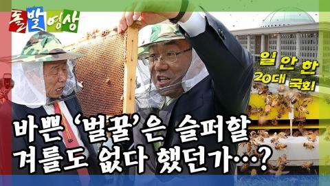 [돌발영상] 국회에서 꿀맛이 날까요?