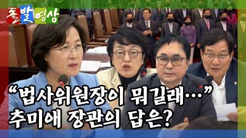 [돌발영상] 오늘도 '평화로운' 법사위
