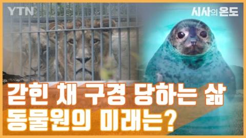 [시사의 온도_5회] 갇힌 채 구경 당하는 삶, 동물원