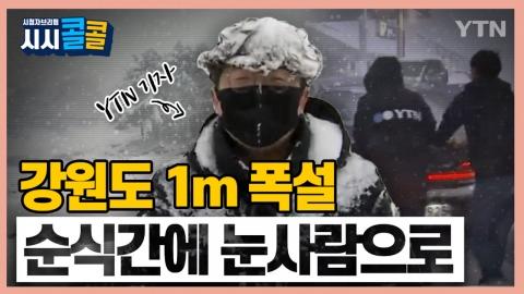 [시청자브리핑 시시콜콜] 강원도 1m 폭설... 순식간에 눈사람이 된 YTN 취재기자의 뒷이야기