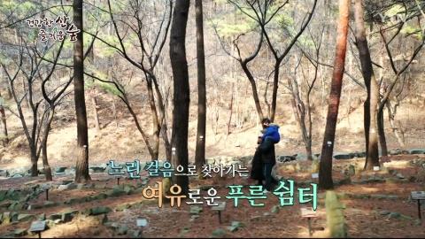 [건강한 산 즐거운 숲] 희리산 휴양림