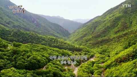 [건강한 산 즐거운 숲] 청도 운문산휴양림