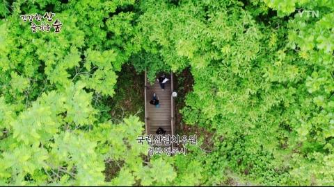 [건강한 산 즐거운 숲] 국립산림치유원