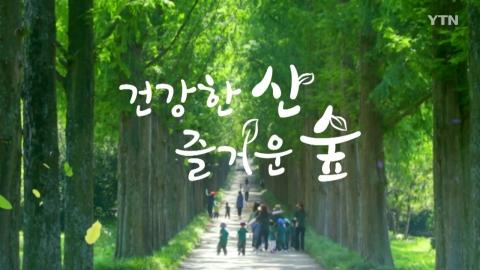[건강한 산 즐거운 숲] 국립가리왕산자연휴양림