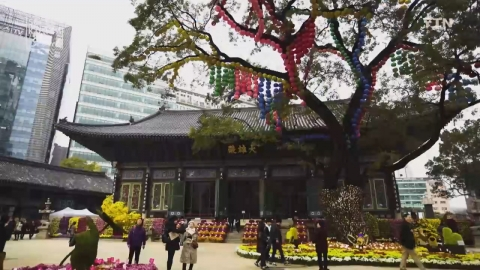 [Secret Korea - Seoul] 제24회 봉은사•조계사 : 도심 속 사찰로 떠나는 힐링 여행