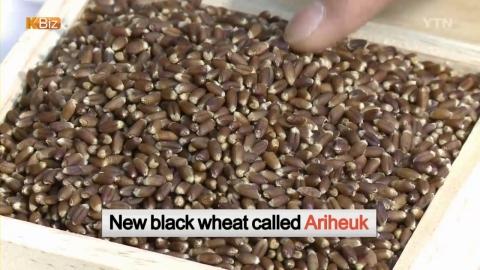 [K BIZ] Healthful Black Wheat Flour