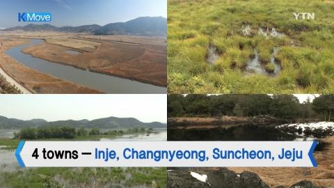 [K-MOVE] 4 Ramsar 'Wetland Cities' in Korea