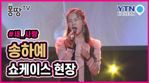 [몽땅TV] 감성적 보이스의 송하예 쇼케이스 현장