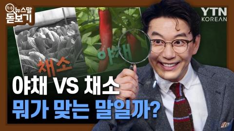 야채·채소, 뭐가 맞는말일까?