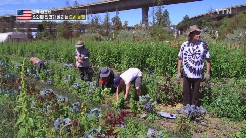 소외된 빈민가에 새 생명 불어넣는 도시 농장