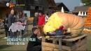 [콕콕 세상돋보기] 거대 호박으로 만든 동화나라