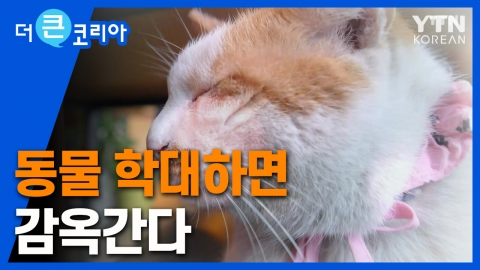 동물 학대하면 감옥간다…안전한 사회를 꿈꾸는 대한민국