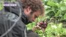 호주 시골 농부 에런의 김치 사랑