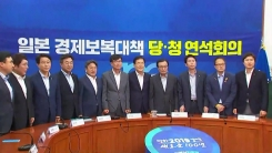당·청, 日 수출 규제 대응 연석회의