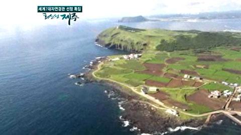 [YTN 스페셜] 영상 보고 화산 섬 제주 2부 유네스코, 제주를 탐하다