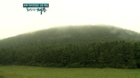 [YTN 스페셜] 영상 보고 화산 섬 제주 3부 용암이 만든 미로, 거문오름