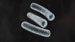 [YTN 스페셜] 포스트 항생제 시대, 생존의 조건
