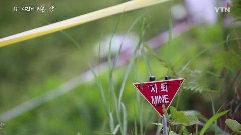 [YTN 특집] DMZ 새로운 여정 1부