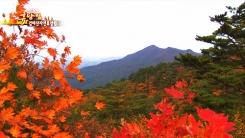국립검마산자연휴양림