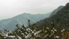 국립 가리왕산 자연휴양림