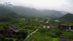 산림강국 코리아 11회