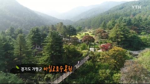 [수목원 산책] 아침고요수목원