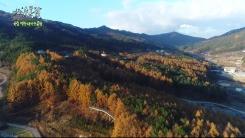 [한국의 수목원] 국립백두대간수목원