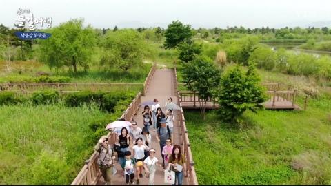 [수려한 물길여행] 낙동강 하굿둑