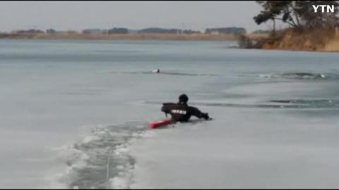 얼음에 빠진 개 구조하기