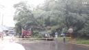 대구 수성구 황금1동 무학산인근 나무넘어져 차량파손   태풍다나스 피해